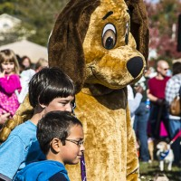 SNAPS At Bark in the Park