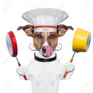 18588565-dog-holding-colorful-a-pot-and-a-pan-Stock-Photo-dog-chef-jack